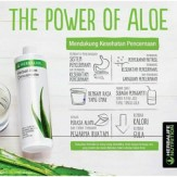 The Power of Aloe