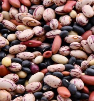 Zinc In Nuts